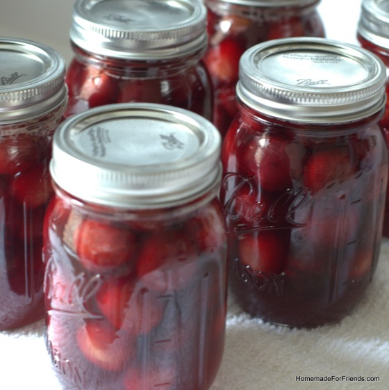 Water Bath Canning: Tips and tricks to home canning.